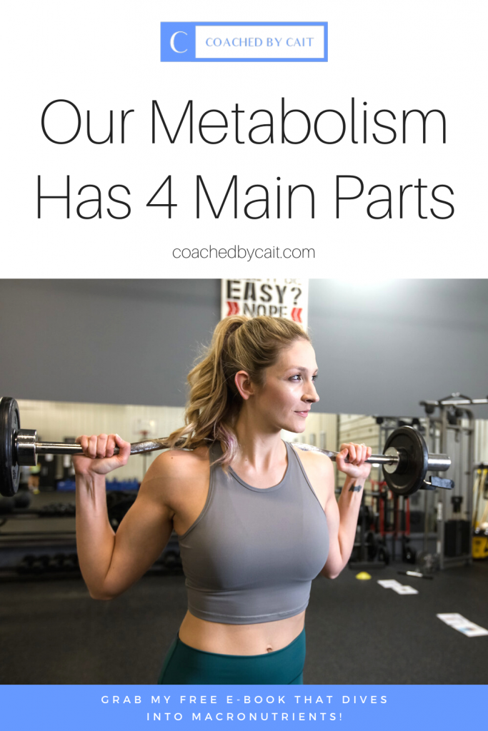 Want to understand the components of metabolism, what influences metabolism, and how macronutrient distribution pays a part? In this post I'll explain the 4 main parts of metabolism. Re-pin and don't forget to grab my FREE E-BOOK that DIVES INTO MACRONUTRIENTS!